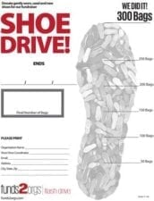 Goal Chart for Flash Shoe Drive